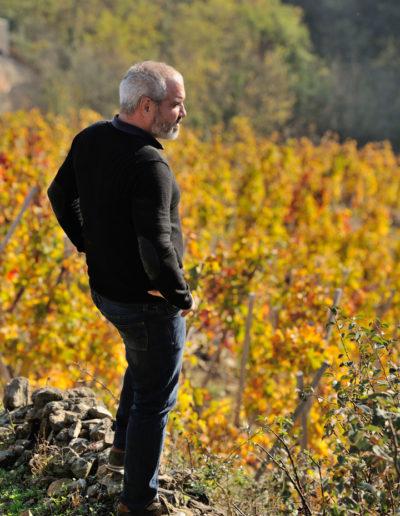 Portrait de Julien Pilon dans les vignes de son domaine