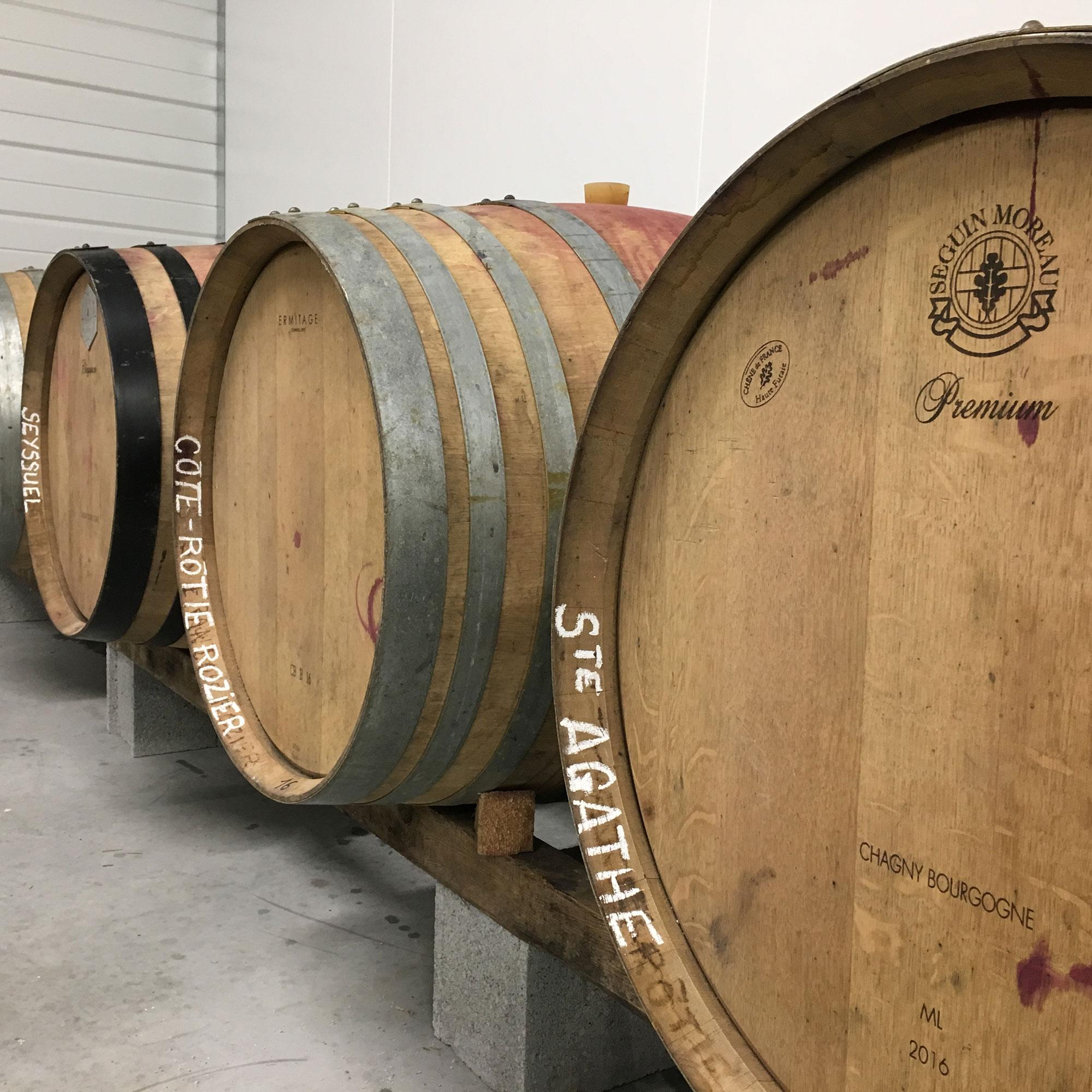 Vue des tonneaux de vin dans la cave Julien Pilon