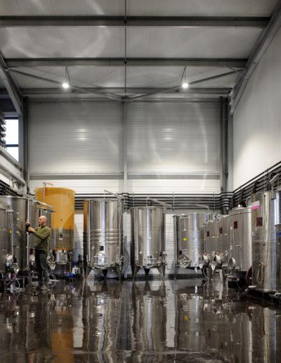 Processus de vinification à la cave Julien Pilon